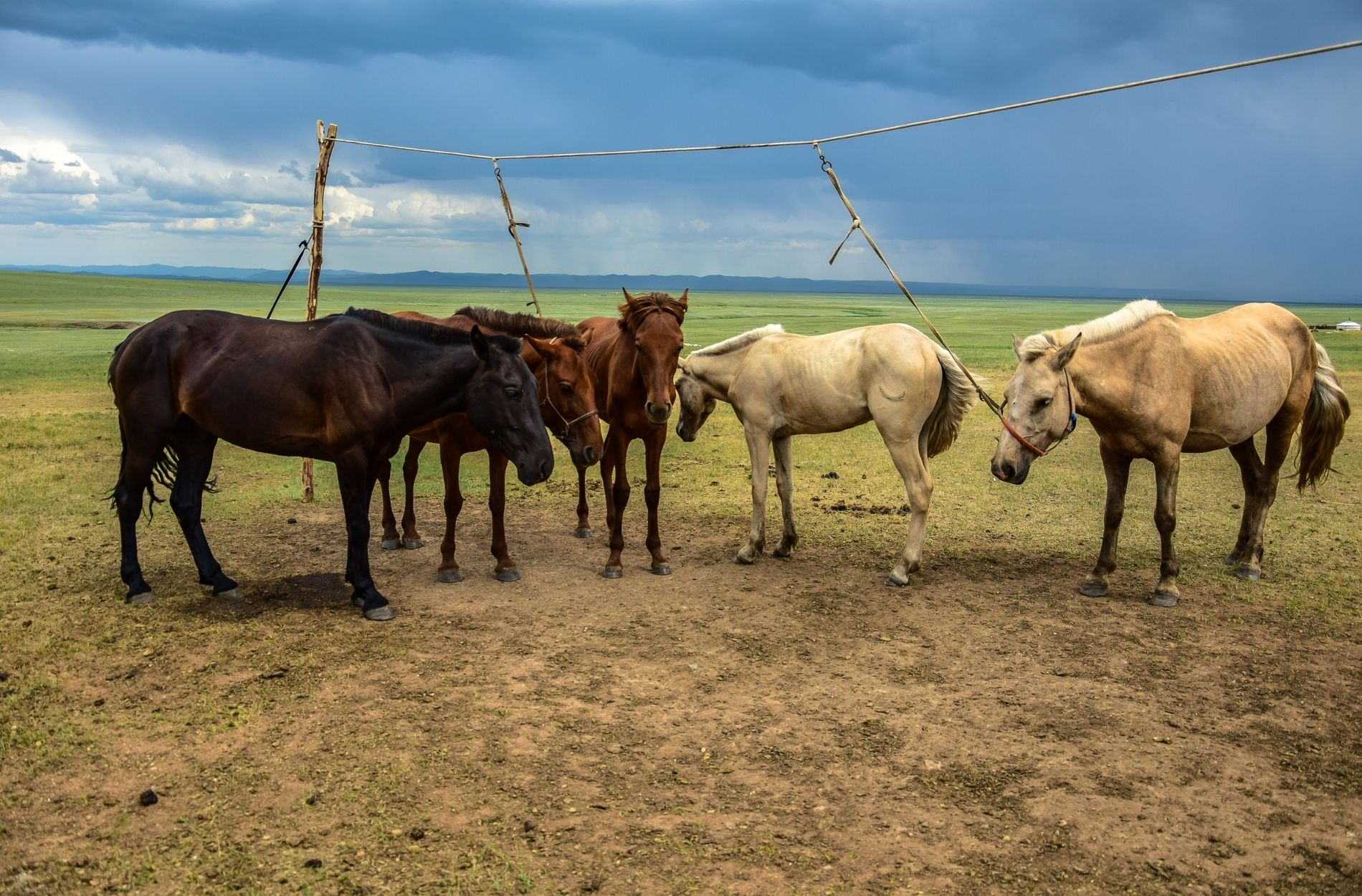 mongolian landscapes photographed by liebre style